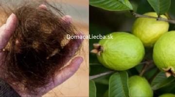Listy tejto rastliny dokážu v 100% prípadov zastaviť vypadávanie vlasov