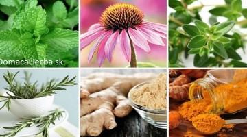 6 silných protizápalových byliniek a ako ich správne používať