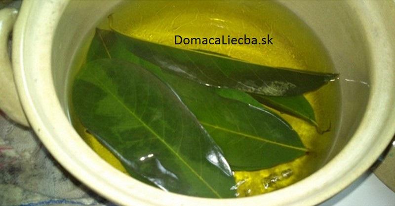 mangove-listy