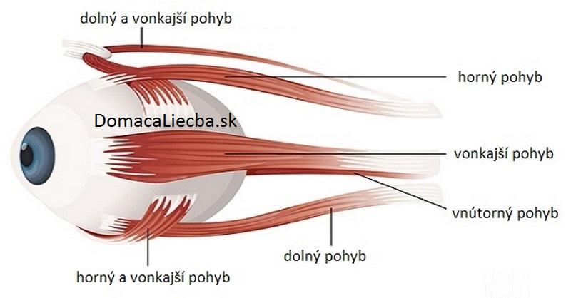 4 očné cvičenia, ktoré vám zlepšia videnie a ostrosť zraku