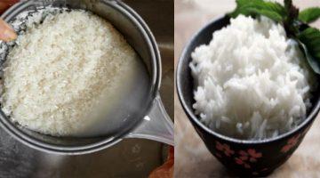 Uvarte ryžu týmto spôsobom: Telo z nej absorbuje len 1/2 kalórií a spáli viac tuku