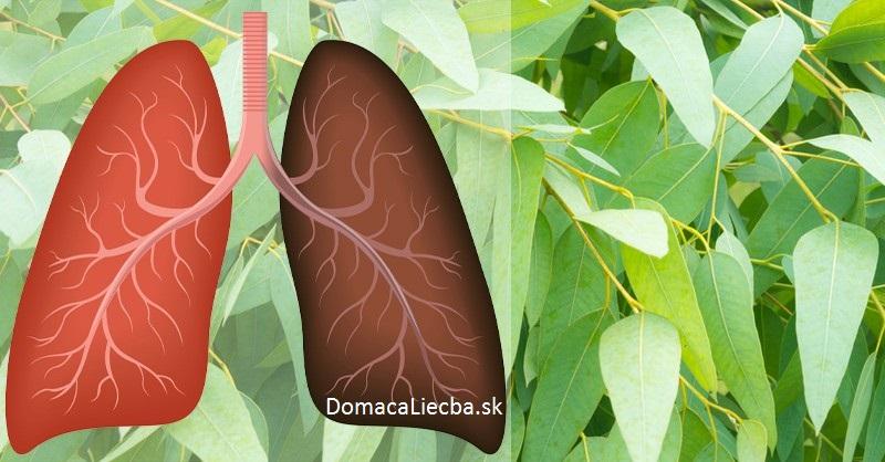 9 rastlín a byliniek, ktoré regenerujú pľúca, potláčajú infekcie a zvyšujú imunitu