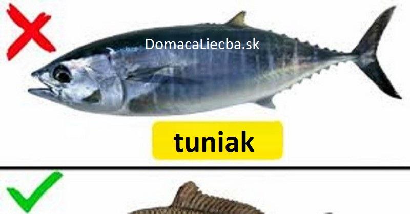 Tieto ryby nejedzte - obsahujú ortuť, hormóny a iné toxíny