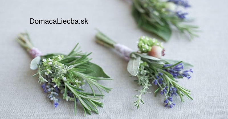 2 liečivé bylinky, ktoré potrebuje každá žena na únavu, migrény a menštruačné ťažkosti