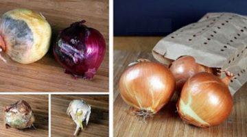 Ako skladovať cibuľu a cesnak, aby vám vydržali čerstvé celé mesiace