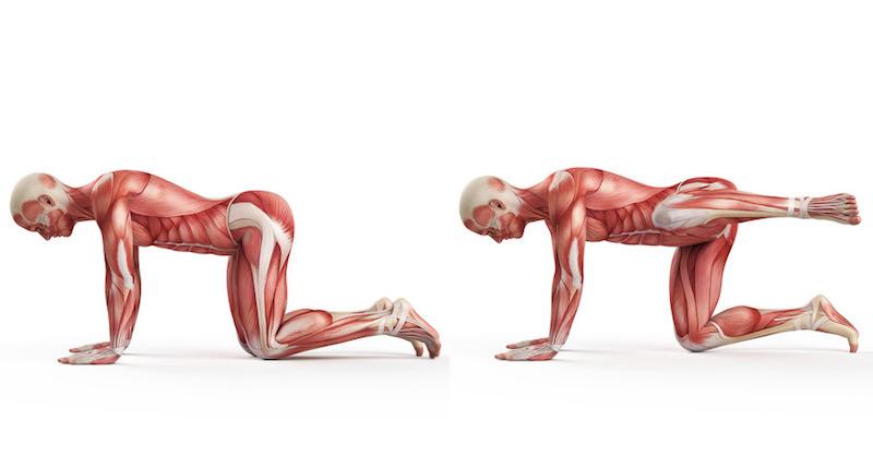 Napravte si chrbticu poškodenú sedením s pomocou týchto 5 cvikov
