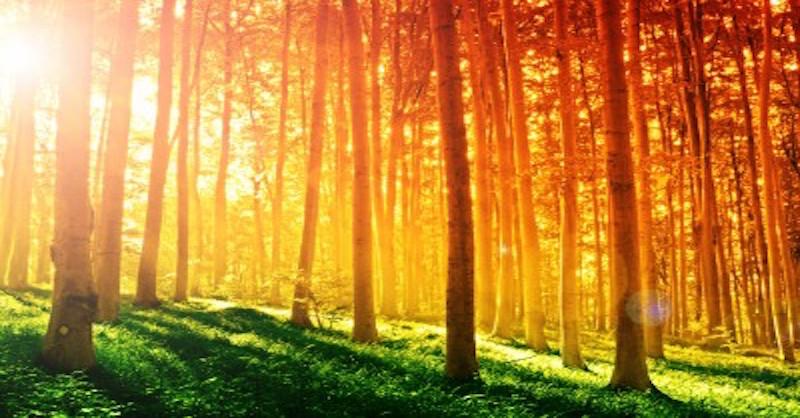 Päť úžasných liečivých účinkov slnečného svetla, o ktorých ste doteraz nepočuli