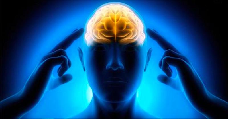 5 vedecky overených trikov ako zlepšiť koncentráciu už za 24 hodín