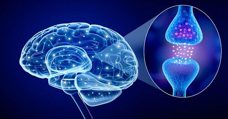 11 spôsobov, ako si prirodzene zvýšiť serotonín, hormón šťastia